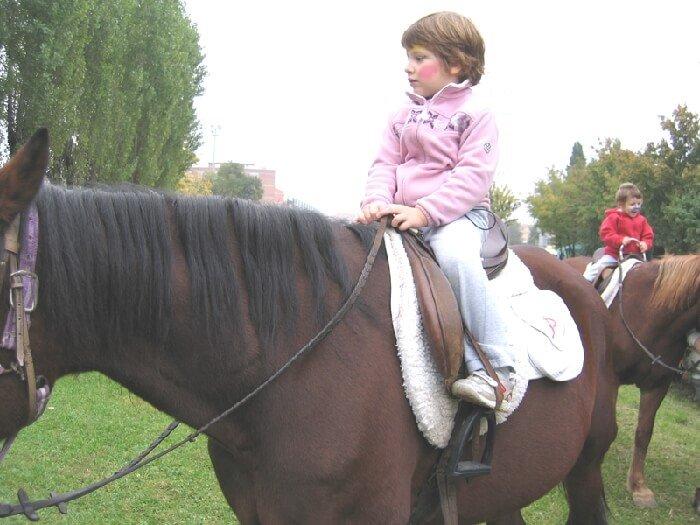2005 a cavallo