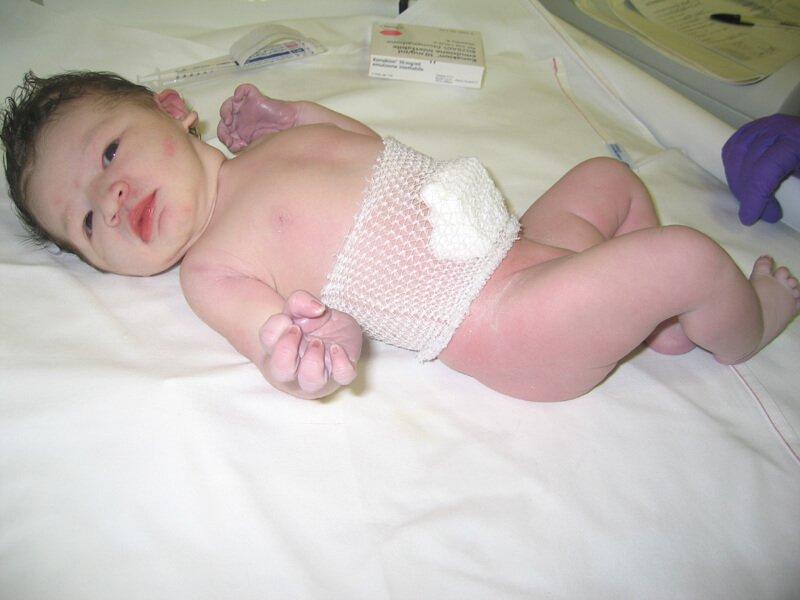 2008 Maia appena nata