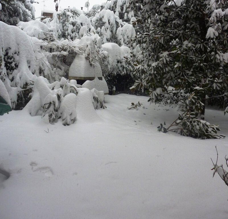 2012 febbraio neve